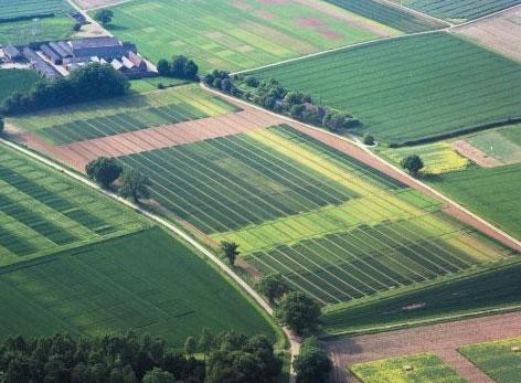ЗК Украины обеспечивает земельные участки следующим образом